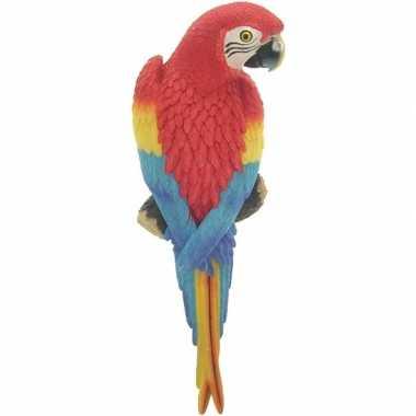 Rode decoratie ara papegaaien dierenbeelden/tuinbeelden beeldje kopen