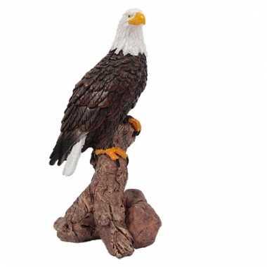 Roofvogel decoratie beeldje afdelaar kopen