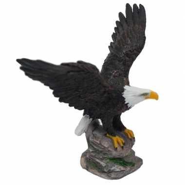 Roofvogel decoratie beeldje zeearend kopen