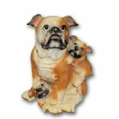 Stenen Bulldog puppies zittend beeldje kopen