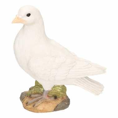 Stenen duif wit beeldje kopen