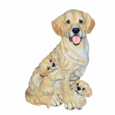 Stenen Golden Retriever puppies zittend beeldje kopen
