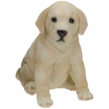 Stenen Labrador puppy zittend beeldje kopen