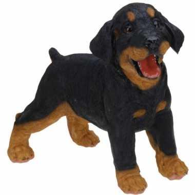 Stenen Rottweiler puppy staand beeldje kopen
