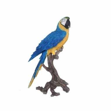 Tropische vogel beeld blauwe papegaai beeldje kopen