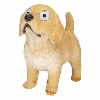 Tuinbeeld beige labrador led oogjes c m beeldje kopen