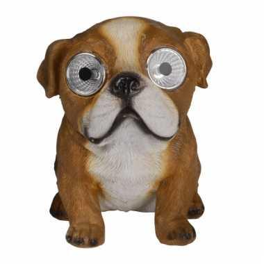 Tuinbeeld Engelse Bulldog hond solar verlichting beeldje kopen
