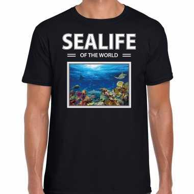 Vissen t shirt dieren foto sealife of the world zwart heren beeldje kopen