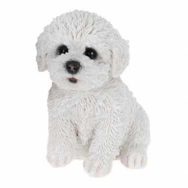 Wit maltezer hond beeldje kopen