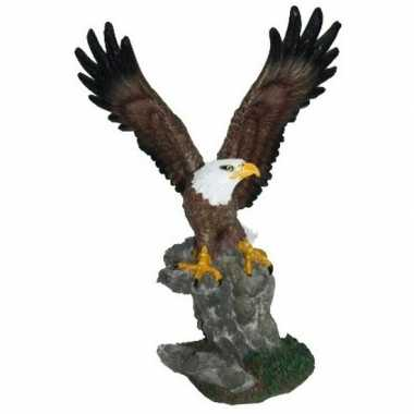 Woon decoratie beeldje zeearend kopen 10106054