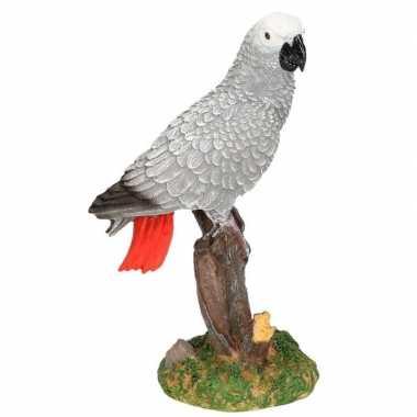 Woonaccessoire beeldje papegaai vogel kopen