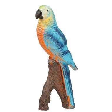 Woonaccessoires blauwe ara papegaaien beeld beeldje kopen