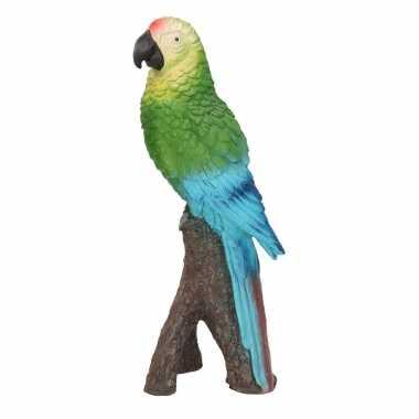 Woonaccessoires groene ara papegaaien beeld beeldje kopen
