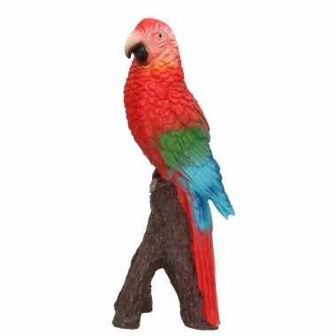 Woonaccessoires rode ara papegaaien beeld beeldje kopen