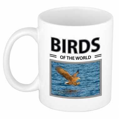 Zeearenden mok dieren foto birds of the world beeldje kopen