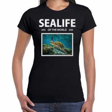 Zeeschildpad t shirt dieren foto sealife of the world zwart dames beeldje kopen