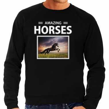 Zwarte paarden sweater / trui dieren foto amazing horses zwart heren beeldje kopen