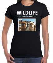 Alpaca t shirt dieren foto wildlife of the world zwart dames beeldje kopen
