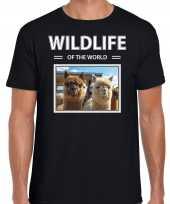 Alpaca t-shirt dieren foto wildlife of the world zwart heren beeldje kopen