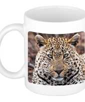 Dieren foto mok jaguar jaguars beker wit ml beeldje kopen