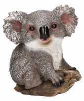 Koala huiskamer beeldje kopen
