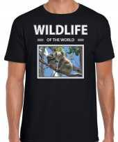 Koala t-shirt dieren foto wildlife of the world zwart heren beeldje kopen
