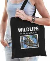 Koala tasje zwart volwassenen kinderen wildlife of the world kado boodschappen tas beeldje kopen 10265452