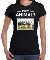 Kudde koeien t-shirt dieren foto farm animals zwart dames beeldje kopen