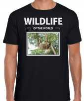Luiaard t-shirt dieren foto wildlife of the world zwart heren beeldje kopen