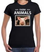 Varkens t-shirt dieren foto farm animals zwart dames beeldje kopen